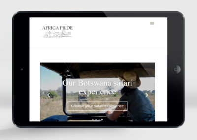 Africa Pride website design