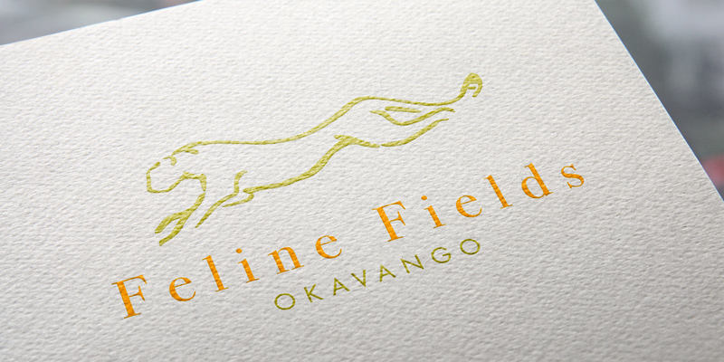 Feline Fields logo design and branding