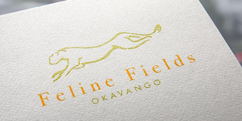 Feline Fields Okavango